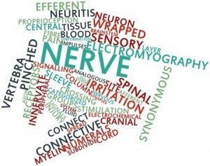 Pinched Nerve Symptoms - Chiropractic Treatment in Bellevue, WA